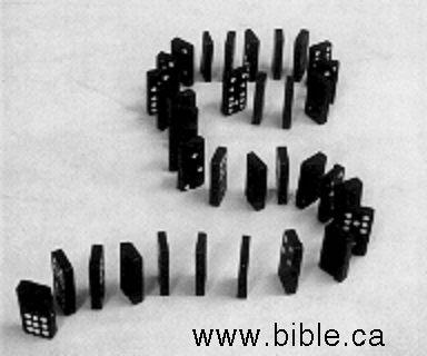 domino-theology