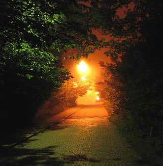 drumul-spre-lumina
