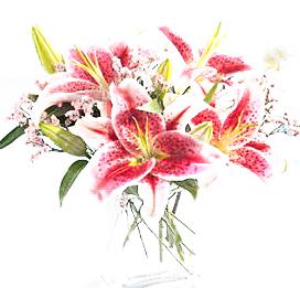 flowers-online-avatars