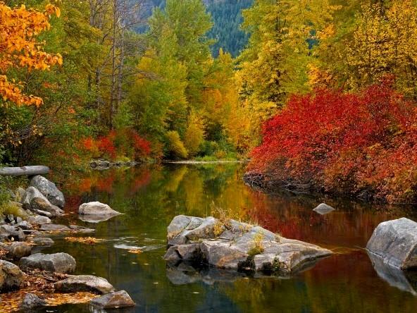 jesen-v-naravi-s-svojimi-cudovitimi-barvami